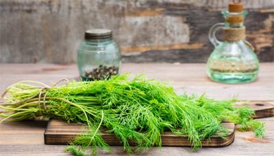 خواص دمنوش گیاه رازیانه | هایپر سلامت